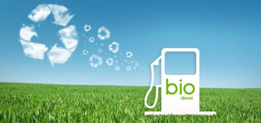 extremebiodiesel.com