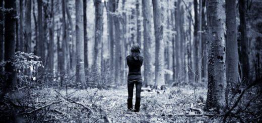 gite nei boschi-terpeni-depressione-nature-going-smart