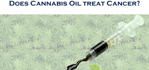 cannabis oil treat cancer