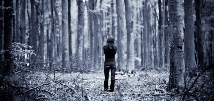 passeio na floresta